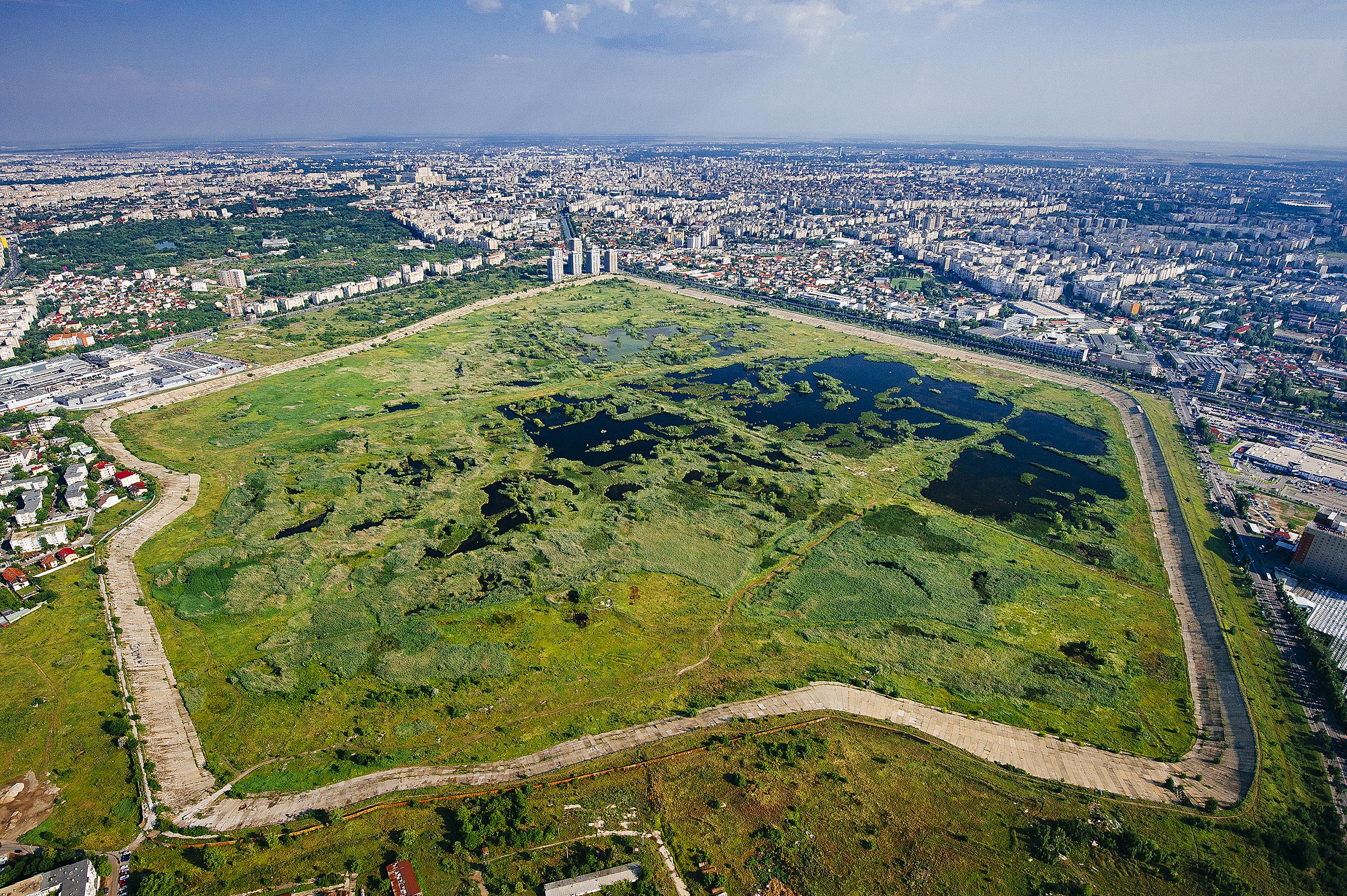 Parcul Natural Vacaresti - Campanie pentru infiintarea primului parc natural urban din Romania
