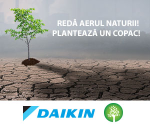 Daikin Plantam Aer